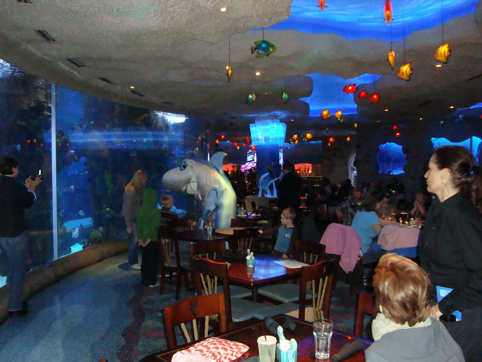 Canal Colibri Blog oficial da NCR Colibri: Restaurantes Temáticos #0390C8 1600 1200
